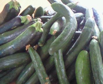 緑の野菜達・・☆
