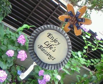 ベランダの風景〜裏庭〜