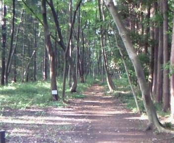 朝のお散歩・・♪♪
