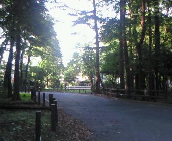 朝のお散歩〜♪♪