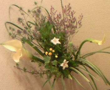 涼しげな花達。、・。