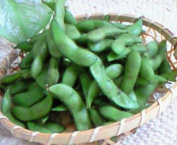 塩茹で枝豆。