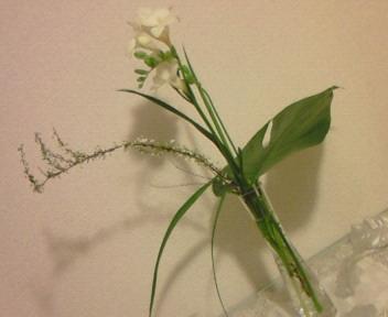 花のある暮らし〜今を生きる。